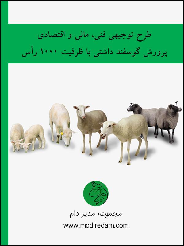 طرح توجیهی فنی، مالی و اقتصادی گوسفند داشتی با ظرفیت ۱۰۰۰ راس