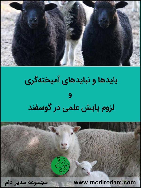 بایدها و نبایدهای آمیخته گری و لزوم پایش علمی در گوسفند